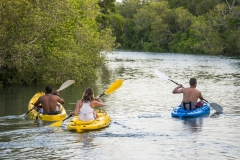 Kayaking-Wild Explore-001