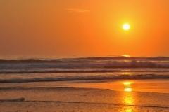 Wild Sunrise-001
