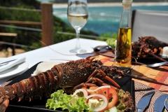 Food-Lobster