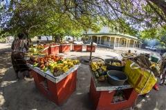 Santa-Maria-Market